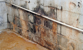 Basement waterproof aurora ohio 44202 contractor